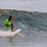 Shark shares wave with young Aussie surfer