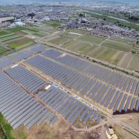 An aerial photo taken in June 2012 shows a solar power station in Kyoto's Fushimi Ward run by SoftBank Corp. subsidiary SB Energy Corp. The city aims to cut its greenhouse gas emissions in 2020 by 25 percent from the 1990 level. | KYODO
