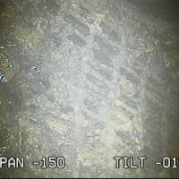 Black lumps that could be melted nuclear fuel are visible Monday at the bottom of reactor No. 2's containment vessel at the Fukushima No. 1 power plant. | TEPCO / VIA KYODO