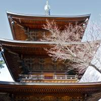 The three-story pagoda of the Gotokuji Temple. | KIT NAGAMURA