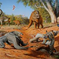 What killed Australia's ancient giant beasts?