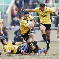 Suntory beats Panasonic in cup final to secure double