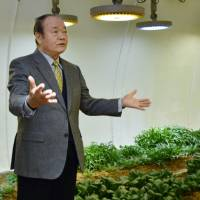 Ishikawa firm's styrofoam domes find favor with farmers seeking disaster-proof growing environment