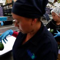 Trump's Mexico trade threat puts more key goods in jeopardy than avocados, tequila