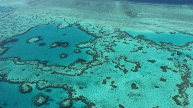 Plan to save Great Barrier Reef has been set back decades, Australian experts say