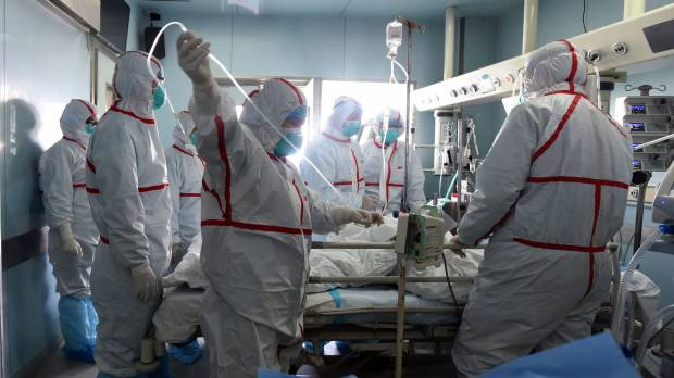 China reports more severe form of bird flu, threat to poultry: WHO