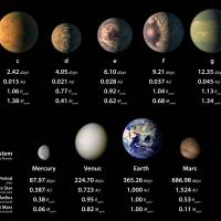 Facts about seven Earth-size planets found around one star