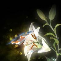 Sticky, insect-sized drones could act as pollinators