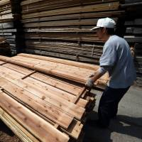 Forestry colleges increasing in Japan amid shortage of workers