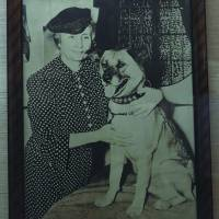 Activist Helen Keller is believed to be the first person to take an Akita to the United States. | MANAMI OKAZAKI