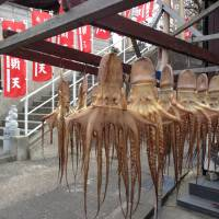 Himakajima: A seafood paradise known for octopus doubles down on a wave of tourism