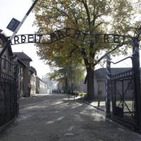 Poland charges 11 who killed lamb, stripped naked outside Auschwitz camp in 'peace' stunt