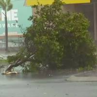 A tree branch lies on the street as Cyclone Debbie sweeps through Bowen, eastern Australia, on Tuesday in this image taken from video. | AP