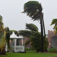 Trees are bent Tuesday by strong winds from Cyclone Debbie near Townsville, Australia.