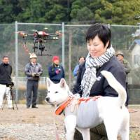 The town of Naka, Tokushima Prefecture, prepares to conduct an experiment Dec. 24 in which a drone will be used to keep track of a hunting dog chasing prey on a mountainside. | KYODO