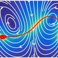Kyoto University professor does the math and finds that sperm swim to a beat