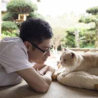 'Nekoatsume House': The cat's meow of Japanese comedy