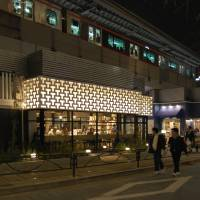 Tsutaya in Tokyo's Nakameguro area provides a stylish place to read under the tracks. | DON O'KEEFE
