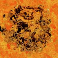 Biosphere yields fossils of possibly earliest-known multicellular life