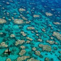 This undated aerial photo shows the extent of coral bleaching in a section of the Great Barrier Reef in Queensland. | AFP-JIJI