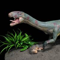 All in the family: Dinosaur cousin's look is quite a surprise for researchers