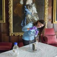 Scents of history: Scientists try to capture, replicate smells of historical objects