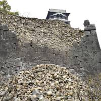 Kumamoto Castle repairs expected to take decades