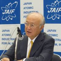 IAEA chief urges global support for decommissioning Fukushima plant