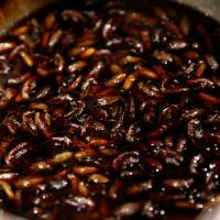 Crickets are cooked in the soup for 'insect tsukemen' at Ramen Nagi. | REUTERS