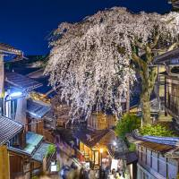 A cherry tree in full bloom adorns Sannenzaka street in Kyoto's Higashiyama Ward. The Japan Tourism Agency said Wednesday that in the first three months of 2017, an estimated 6,537,200 people visited Japan, up 13.6 percent on year. | ISTOCK