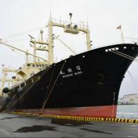 Japanese fleet returns from Antarctic with 333 whales