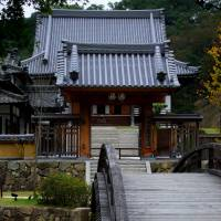 The way forward: Dragon's Back Bridge leads over Heart Character Pond and up to the International Zen Training Hall, where seated meditation sessions take place. | STEVE JOHN POWELL