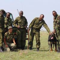 Asuka Takita: Veterinarian embraces life on the African plains