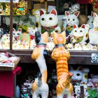 Paws for thought: Professor Kasuhiro Miyamoto of Kansai University estimates that merchandise about cats brings in about ¥3 billion a year. | ISTOCK