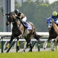 Kitasan Black leads the way during the spring Tenno-sho on Sunday in Kyoto. Kitasan Black won the race. | KYODO