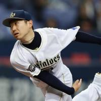 Kaneko goes distance as Buffaloes tame Lions