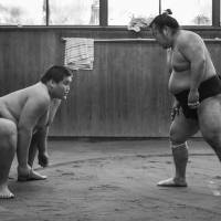 Gantulga Ganerdene, the future ozeki Terunofuji, trains with Shunba on Dec. 26, 2010. Now in Isegahama stable they are the only two rikishi left from the defunct Magaki stable. | JOHN GUNNING