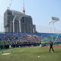 Future high-rise building could provide free views of Jingu Stadium games