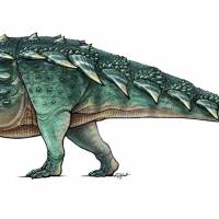 The newly discovered armored dinosaur named Zuul crurivastator, found in northern Montana, is seen in an illustration.   REUTERS