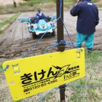 Fukushima village begins sowing rice for first time since nuclear crisis