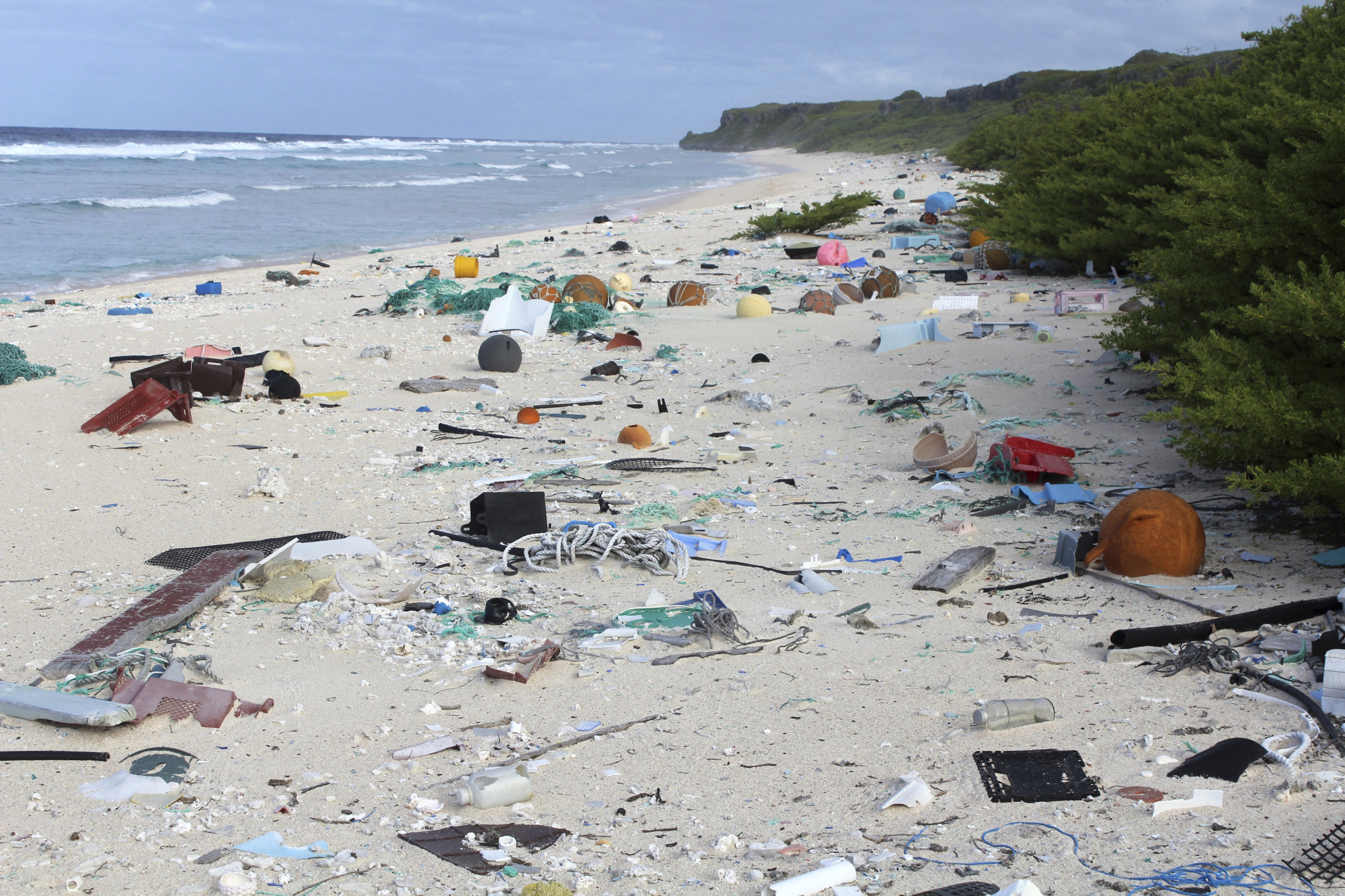 When researchers traveled to tiny, uninhabited Henderson Island in the middle of the Pacific Ocean in 2015, they were astonished to find an estimated 38 million pieces of mostly plastic trash washed up on the beaches.   AP