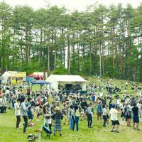 Forest getaway: Punters gather at a previous Taicoclub.