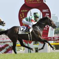 Lemaire, Fujisawa taste Japanese Derby glory with Rey de Oro