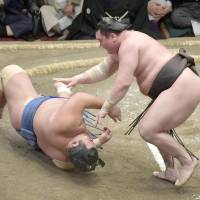 Rivals Hakuho, Harumafuji improve to 8-0