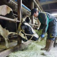 LDP calls on government to protect farm sector in Japan-EU trade talks