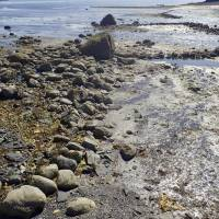 Archaeologists find prehistoric stone fish trap near mouth of Alaska island salmon stream