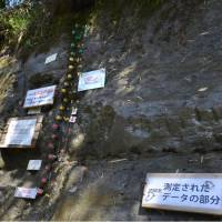 The stratum on a cliff in Ichihara, Chiba Prefecture, that is seen in this photo taken in April has a horizontal line showing that north and south magnetic poles switched 770,000 years ago. | KYODO