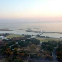 The wetland in Kasai Rinkai Park in Tokyo's Edogawa Ward is reportedly being pitched for the Ramsar Convention. | KYODO