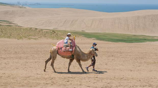 Drifting through the storied sand dunes of Tottori