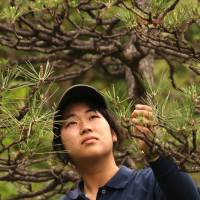 Looking sharp: Newly minted professional gardener Norie Watanabe gives full attention to a pine at Mejiro Teien. | KIT NAGAMURA